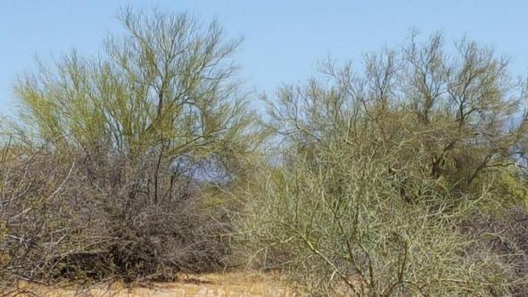 15326 E. Dixileta Dr., Scottsdale, AZ 85262 Photo 5