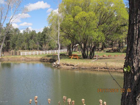 4384 W. White Mountain Blvd., Lakeside, AZ 85929 Photo 47