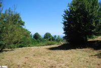 Home for sale: 97 The Cliffs Parkway, Landrum, SC 29356