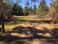 Home for sale: 0 Star Route Rd., Lillian, AL 36549