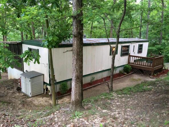 1953 County Rd. 330, Crane Hill, AL 35053 Photo 4