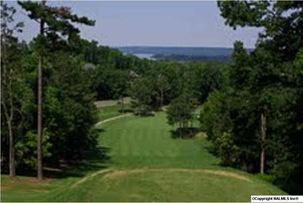 27 Eagle Ridge Dr., Guntersville, AL 35976 Photo 4