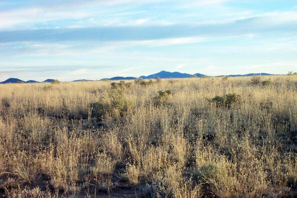 6218 S. Prairie Grass Ln., Williams, AZ 86046 Photo 5