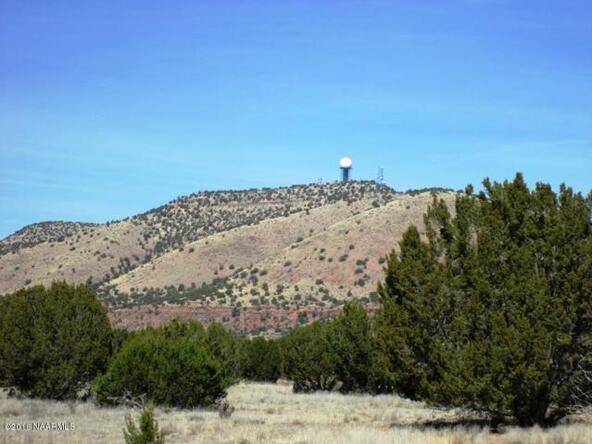 53780 N. Cedar Dr., Seligman, AZ 86337 Photo 7