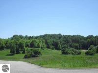 Home for sale: 13 E. Rolling Hills Dr., Traverse City, MI 49684