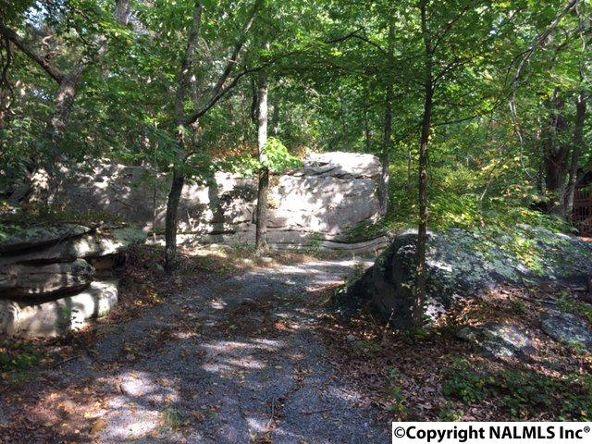 163 County Rd. 600, Mentone, AL 35984 Photo 2