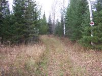 Home for sale: 13.5 Acres Near Hwy. M28, Trout Creek, MI 49967