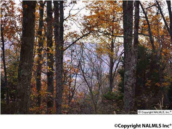 3 South Bluff Trail, Huntsville, AL 35803 Photo 6