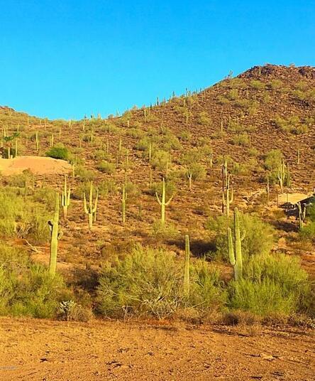 1700 W. Sentinel Rock - W 5 Rd., Phoenix, AZ 85086 Photo 7