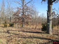 Home for sale: Lot 44 Hwy. 62 West, Henderson, AR 72544