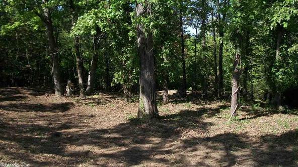 44 Pine Trail, Higden, AR 72067 Photo 4