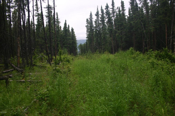 5041 N. Infinite Rd., Wasilla, AK 99654 Photo 7