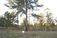 Home for sale: Lot 8 Sweetwater (Ragin Rd.), Moultrie, GA 31768