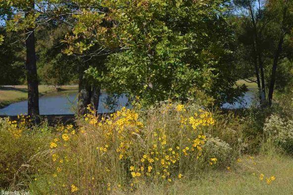 32 Meadow Crest, Sherwood, AR 72120 Photo 52