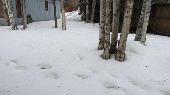 13103 Brandon St., Anchorage, AK 99515 Photo 41