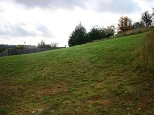 Lot 50 L 50 Whitetail Dr., Walnut Shade, MO 65771 Photo 4