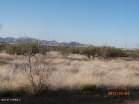 Home for sale: Tbd E. Red Hawk, Saint David, AZ 85630