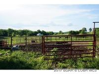 Home for sale: 27 Ozark Trail, Iberia, MO 65486