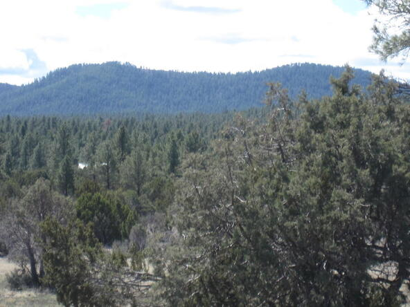 40.88 Acre Of 106-36-034-I, Vernon, AZ 85940 Photo 3