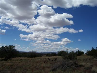 204 Juniperwood Rnch Un 3 Lot 204, Ash Fork, AZ 86320 Photo 13