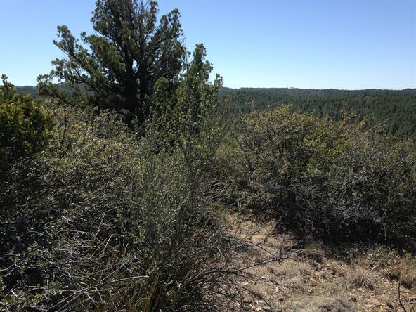 497 E. Old Senator Rd. None, Prescott, AZ 86303 Photo 4