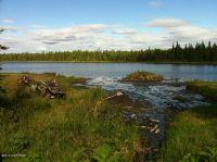 Home for sale: Tr E. No Rd., Trapper Creek, AK 99683