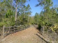 Home for sale: 320 Old Bubbly Rd., Pierson, FL 32180