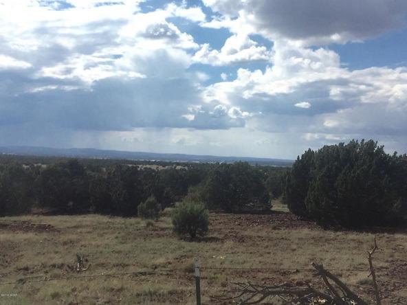 850 Cinder Pit Rd., Show Low, AZ 85901 Photo 44