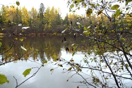 Lot 1 - 5813 Hwy. 70, Eagle River, WI 54521 Photo 1
