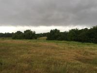 Home for sale: 414 Ball St., Tom Bean, TX 75489