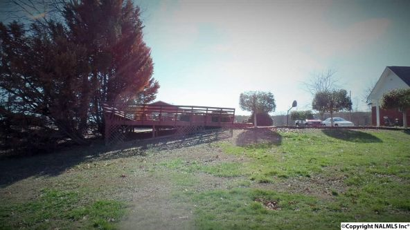 278 County Rd. 557, Grove Oak, AL 35975 Photo 9