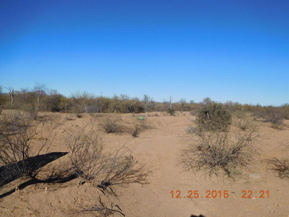 11285 N. Musket, Marana, AZ 85653 Photo 15