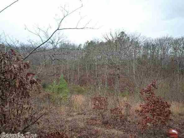 22 Moose Ridge, Mount Ida, AR 71957 Photo 3