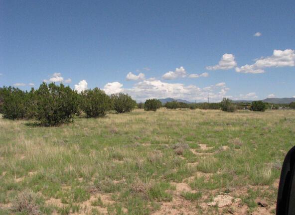 206e Bixler Trail, Ash Fork, AZ 86320 Photo 10