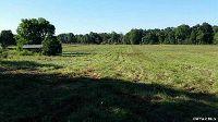 Home for sale: 00 Ellis Rd., Milledgeville, TN 38359