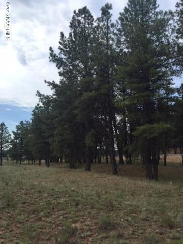 737 N. Cool Pines Rd., Williams, AZ 86046 Photo 6