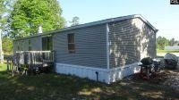 Home for sale: 1873 Woodtrail Dr., Gaston, SC 29053