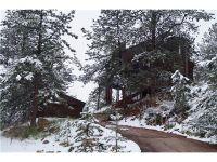 Home for sale: 1058 Ponderosa Way, Woodland Park, CO 80863