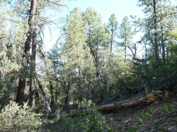 200 E. Cline Crossing, Young, AZ 85554 Photo 65