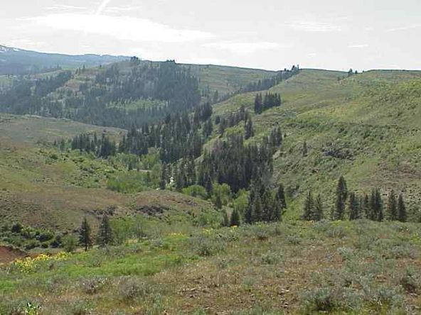Lot 2 Middle Fork Rd., Council, ID 83612 Photo 3