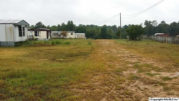 256 County Rd. 882, Crossville, AL 35962 Photo 1