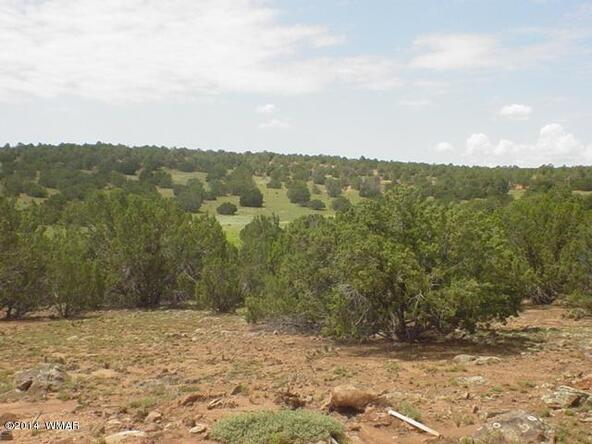 1b N. 8690, Concho, AZ 85924 Photo 7