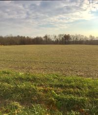 Home for sale: 0-54.9ac St. Rt 28, Leesburg, OH 45135
