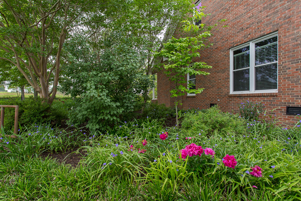 3880 Mobbs School Rd., Union Grove, AL 35175 Photo 45