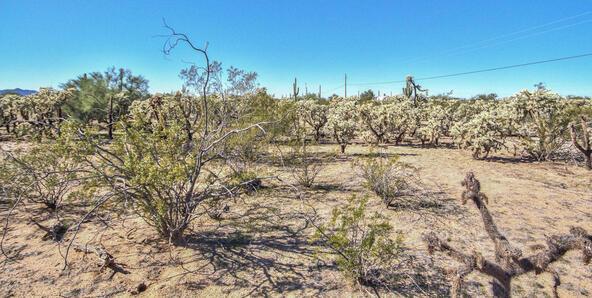 27361 E. Quartzite Dr., Florence, AZ 85132 Photo 18