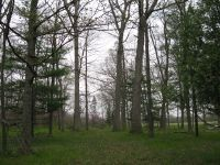 Home for sale: 000 County Rd. 56, Auburn, IN 46706