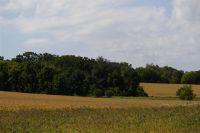 Home for sale: Lot 8 Heatherstone Ridge, Sun Prairie, WI 53590