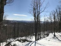Home for sale: Lot #3 Woodsman Rd. Ext, Dover, VT 05356