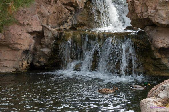 7935 S. Stephanie Ln., Tempe, AZ 85284 Photo 31