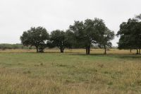 Home for sale: 000 Old Hwy. Rd., Inez, TX 77968
